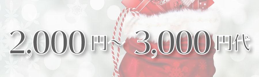 オタク向けクリスマスプレゼント 2000円-3000円代