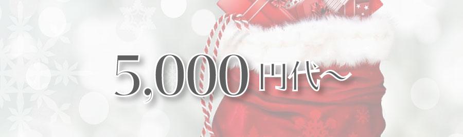 オタク向けクリスマスプレゼント 5000円代