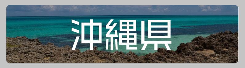 沖縄県のアニメ・オタクショップ