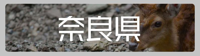 奈良県のアニメ・オタクショップ